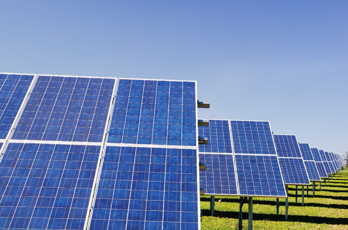 Solar panels in a grassy field