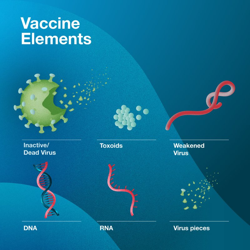 Elements of a vaccine