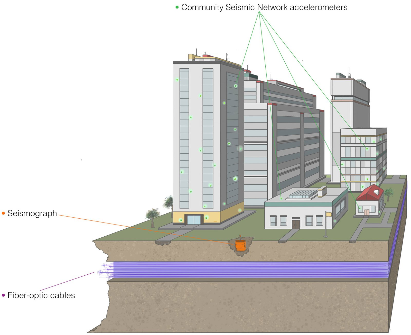 Cross section of a city scape and residential area showing the community seismic network, seismometer, and fiber-optic cables.