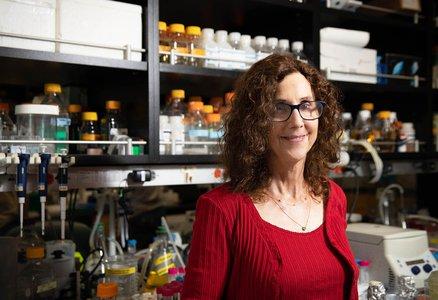 Caltech Professor Pamela Bjorkman