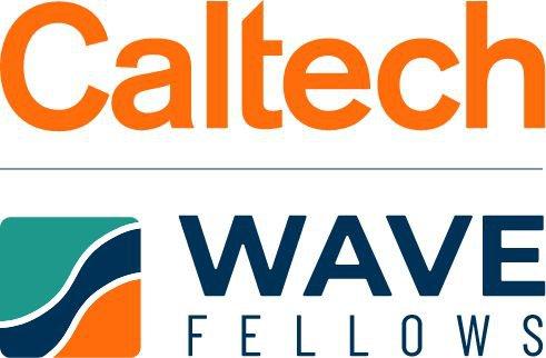 WAVE Logo Compact 2