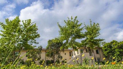 Avery garden