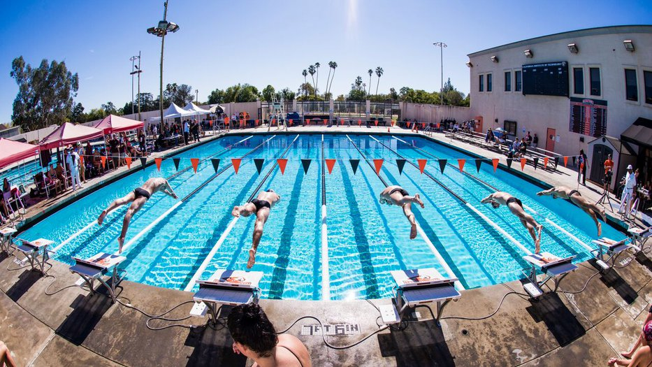 Caltech Swim Team Diving into the pool.