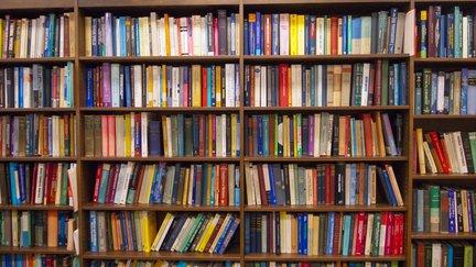 Textbooks on a shelf