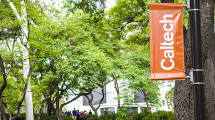 Caltech banner with foliage