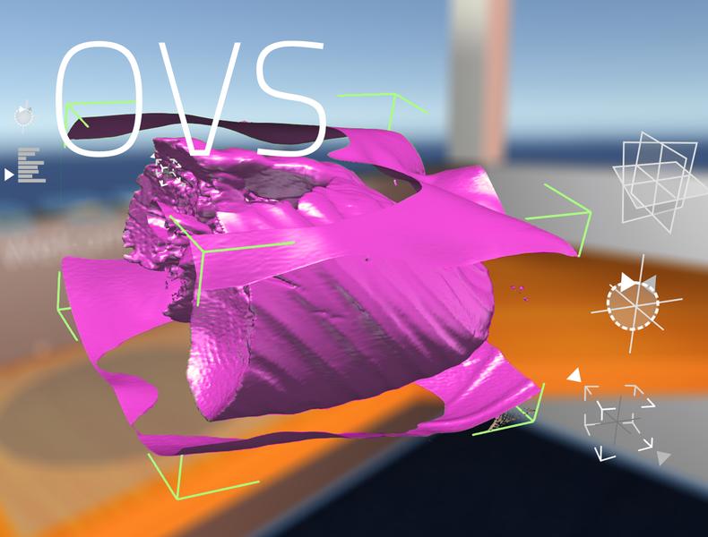 OVS - Open Visualization Space