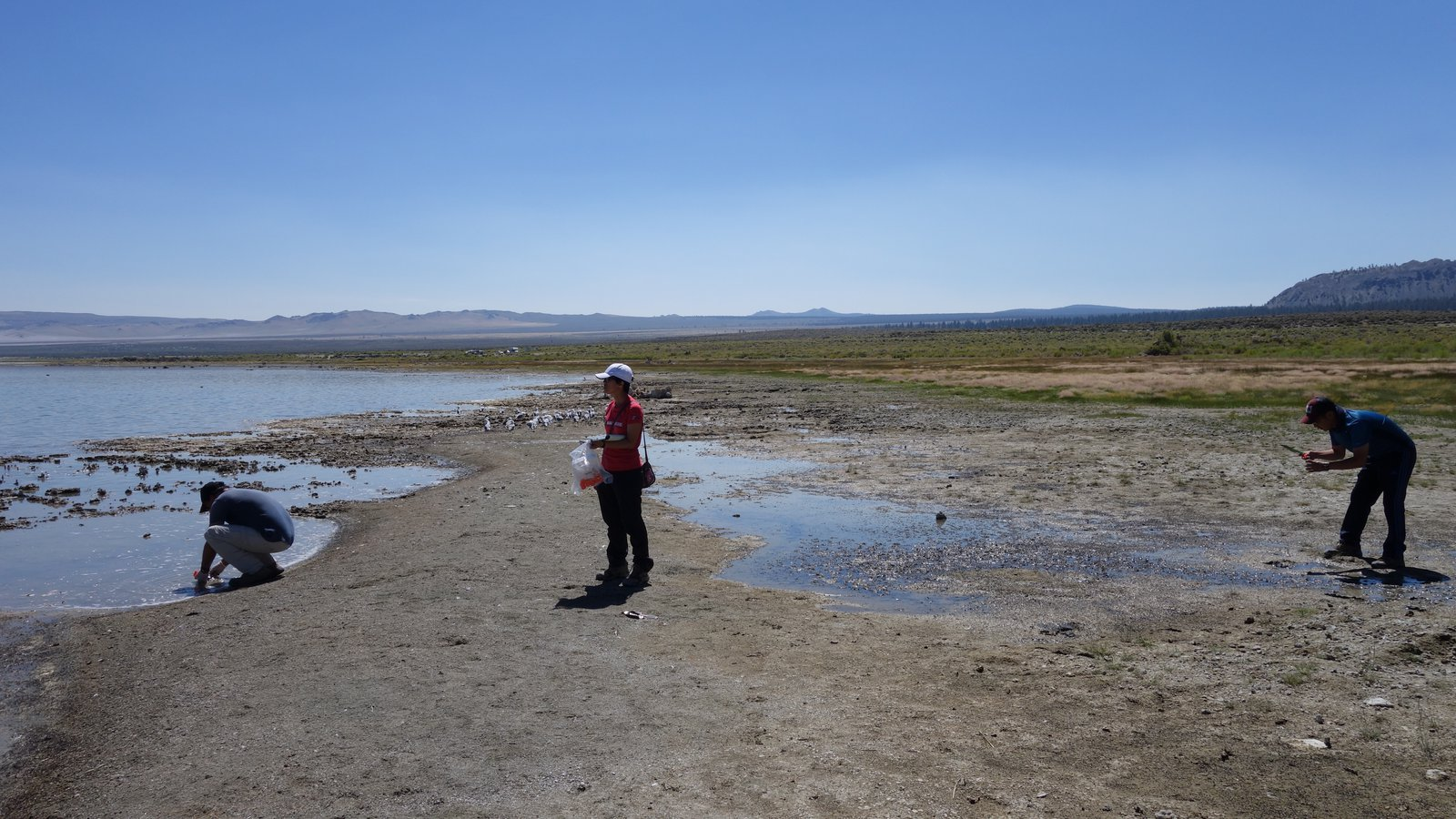 Researchers working at Mono Lake